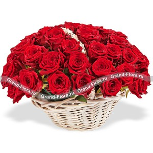 Dance of love - a basket of red roses